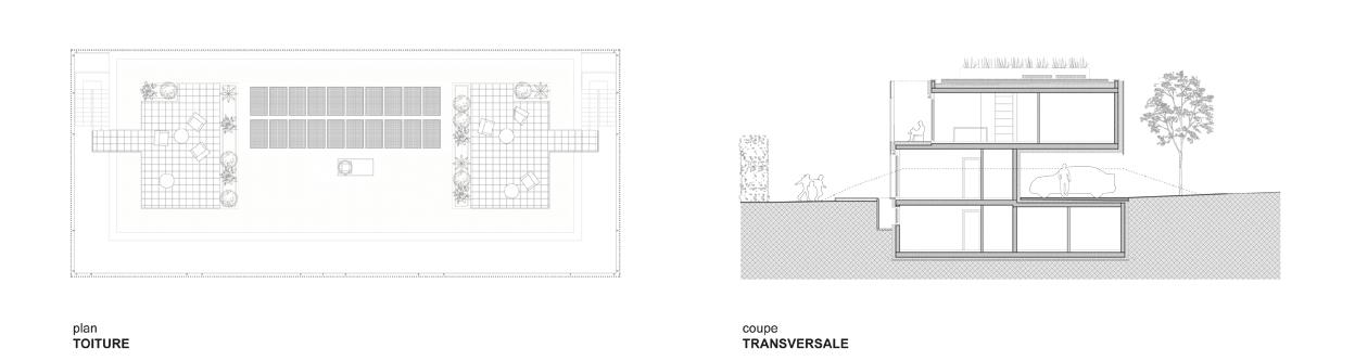 guenin architecte Vandoeuvres Immeuble de quatre logements